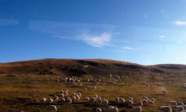 Plan Your Trip To Tibet From April-Explore Tibet.