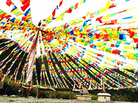 Saga Dawa (Vesak) - Festivals in Tibet