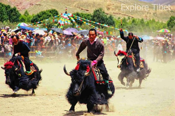 Gyantse Damag (Horse Racing Festival)