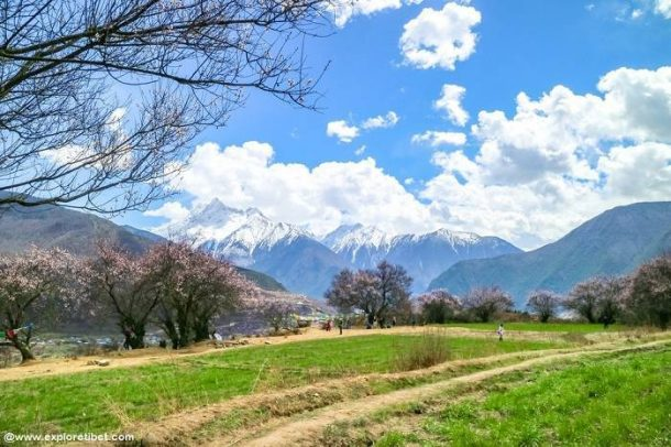 Spring is in the air as Tibet opens for the 2019 Tourist Season