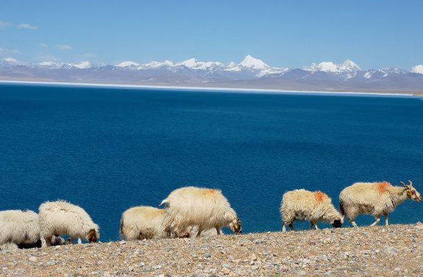 Lake Rakshastal – The Ghost Lake of Tibet