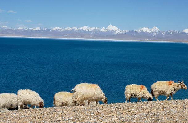 Lake Rakshastal – The Ghost Lake of Tibet
