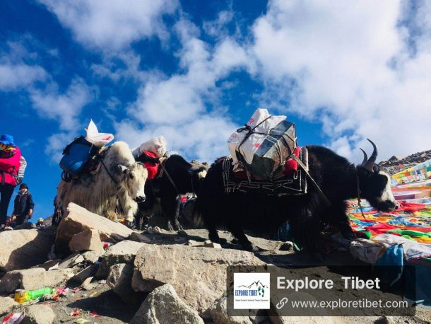 Tibet Permits for International Travelers