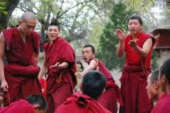 Monks-debate-at-Sera-monast