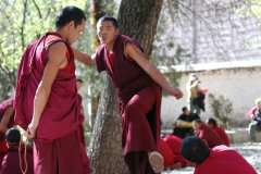 9-Debating-monks-at-Sera